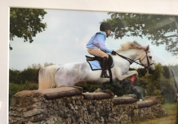 For Sale: Pebbles – 14 year old grey and white mare – Irish 148 cm