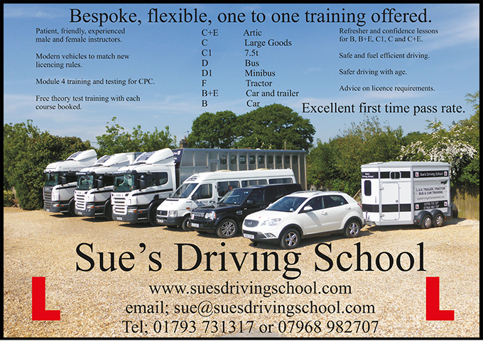 Sues Driving School